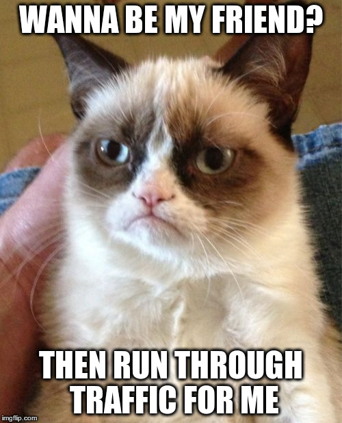 Grumpy Cat Meme | WANNA BE MY FRIEND? THEN RUN THROUGH TRAFFIC FOR ME | image tagged in memes,grumpy cat | made w/ Imgflip meme maker