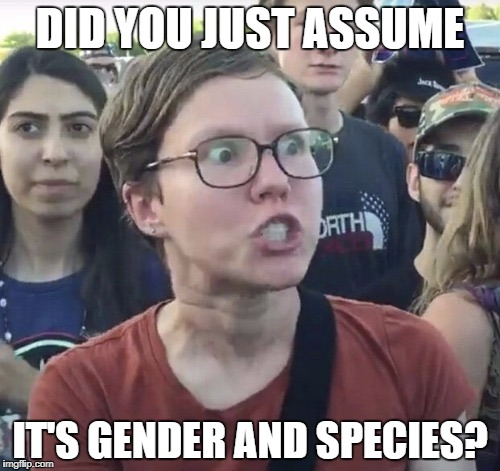 DID YOU JUST ASSUME IT'S GENDER AND SPECIES? | made w/ Imgflip meme maker