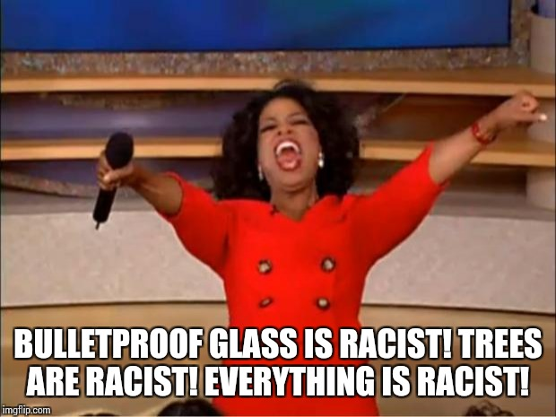 Oprah You Get A Meme | BULLETPROOF GLASS IS RACIST! TREES ARE RACIST! EVERYTHING IS RACIST! | image tagged in memes,oprah you get a | made w/ Imgflip meme maker