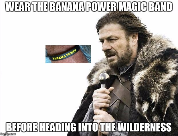 Wilderness Man | WEAR THE BANANA POWER MAGIC BAND BEFORE HEADING INTO THE WILDERNESS | image tagged in banana power | made w/ Imgflip meme maker