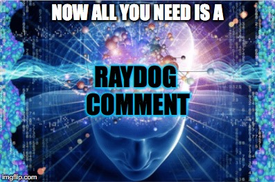 NOW ALL YOU NEED IS A RAYDOG COMMENT | made w/ Imgflip meme maker