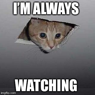 Ceiling Cat Meme | I'M ALWAYS WATCHING | image tagged in memes,ceiling cat | made w/ Imgflip meme maker