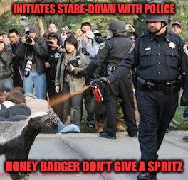INITIATES STARE-DOWN WITH POLICE HONEY BADGER DON'T GIVE A SPRITZ | made w/ Imgflip meme maker