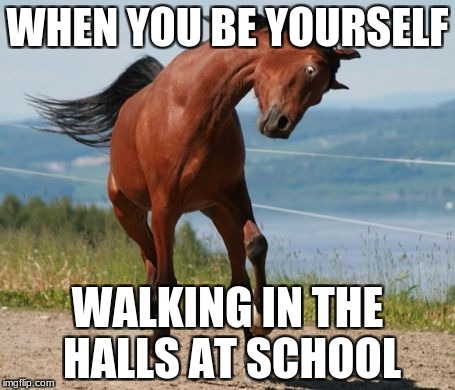 Horse | WHEN YOU BE YOURSELF WALKING IN THE HALLS AT SCHOOL | image tagged in horse | made w/ Imgflip meme maker
