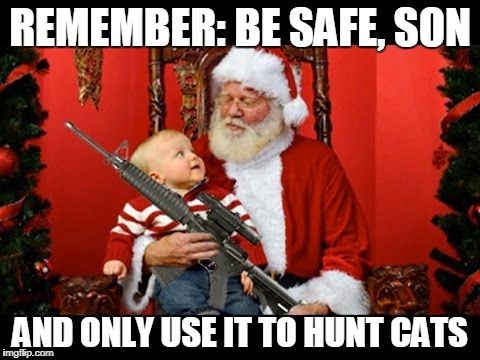 REMEMBER: BE SAFE, SON AND ONLY USE IT TO HUNT CATS | made w/ Imgflip meme maker