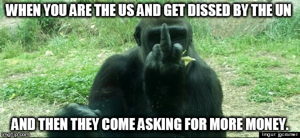 Screw off UN | WHEN YOU ARE THE US AND GET DISSED BY THE UN AND THEN THEY COME ASKING FOR MORE MONEY. | image tagged in middle finger un general assembly | made w/ Imgflip meme maker