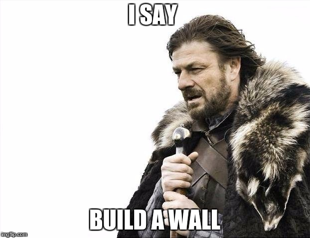 Brace Yourselves X is Coming Meme | I SAY BUILD A WALL | image tagged in memes,brace yourselves x is coming | made w/ Imgflip meme maker