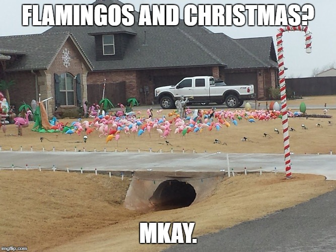 Flamingos for Christmas | FLAMINGOS AND CHRISTMAS? MKAY. | image tagged in xmas flamingos | made w/ Imgflip meme maker