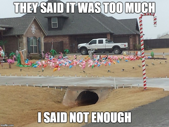 THEY SAID IT WAS TOO MUCH I SAID NOT ENOUGH | image tagged in xmas flamingos | made w/ Imgflip meme maker