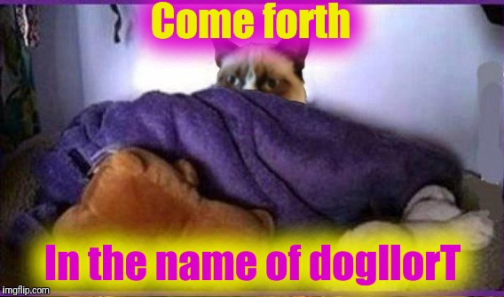 Come forth In the name of dogllorT | made w/ Imgflip meme maker