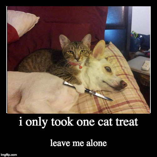 i only took one cat treat | leave me alone | image tagged in funny,demotivationals | made w/ Imgflip demotivational maker