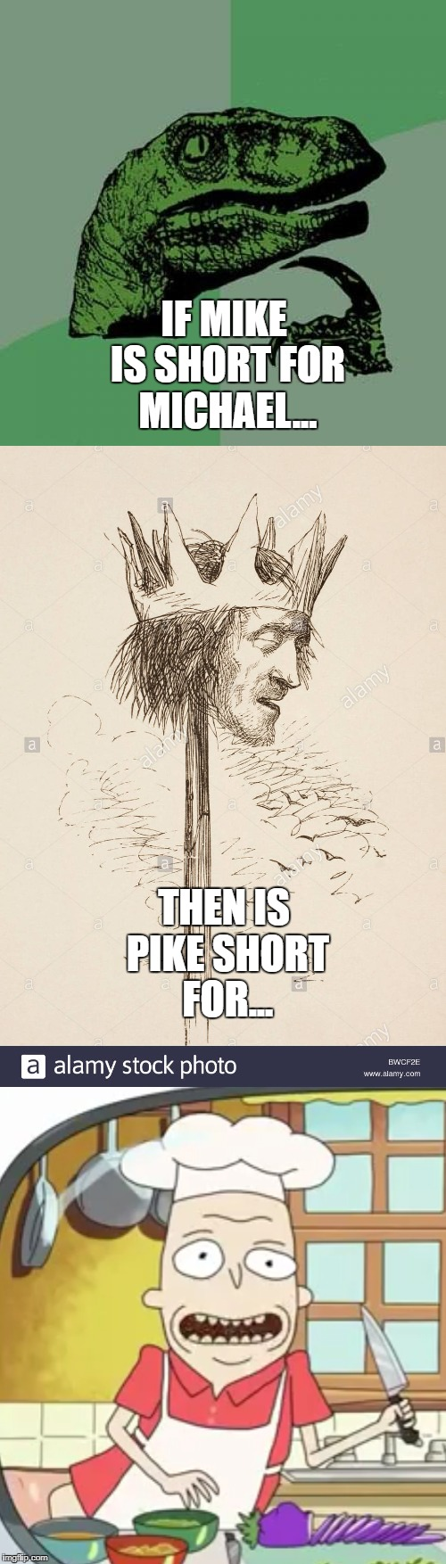 If Mike is short for Michael | IF MIKE IS SHORT FOR MICHAEL... THEN IS PIKE SHORT FOR... | image tagged in mike,michael,pike,pichael,rick and morty,pichael thompson | made w/ Imgflip meme maker