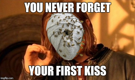 One Does Not Simply Meme | YOU NEVER FORGET YOUR FIRST KISS | image tagged in memes,one does not simply | made w/ Imgflip meme maker