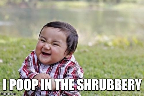 Evil Toddler Meme | I POOP IN THE SHRUBBERY | image tagged in memes,evil toddler | made w/ Imgflip meme maker