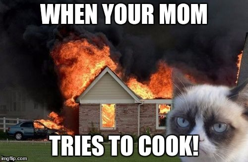 Burn Kitty Meme | WHEN YOUR MOM TRIES TO COOK! | image tagged in memes,burn kitty,grumpy cat | made w/ Imgflip meme maker