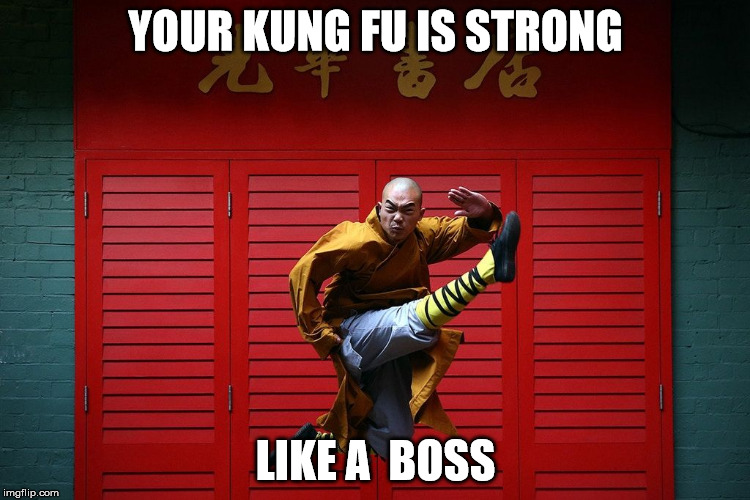 YOUR KUNG FU IS STRONG LIKE A  BOSS | image tagged in your kung fu is strong | made w/ Imgflip meme maker