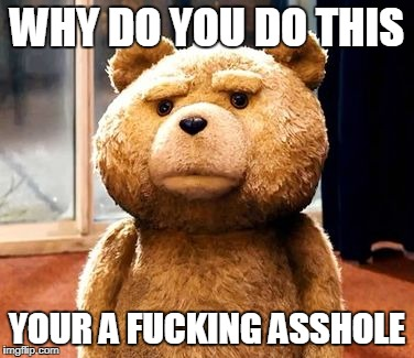 TED Meme | WHY DO YOU DO THIS YOUR A F**KING ASSHOLE | image tagged in memes,ted | made w/ Imgflip meme maker