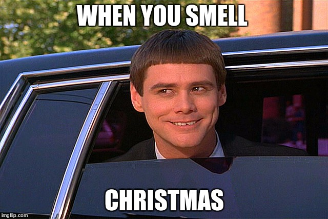 I smell christmas. do you, too? | WHEN YOU SMELL CHRISTMAS | image tagged in lloyd christmas limo | made w/ Imgflip meme maker