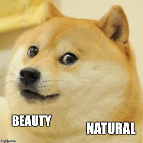 Doge Meme | BEAUTY NATURAL | image tagged in memes,doge | made w/ Imgflip meme maker