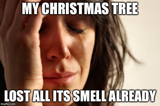 First World Problems Meme | MY CHRISTMAS TREE LOST ALL ITS SMELL ALREADY | image tagged in memes,first world problems | made w/ Imgflip meme maker