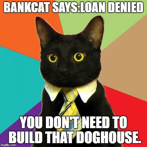 Business Cat Meme | BANKCAT SAYS:LOAN DENIED YOU DON'T NEED TO BUILD THAT DOGHOUSE. | image tagged in memes,business cat | made w/ Imgflip meme maker