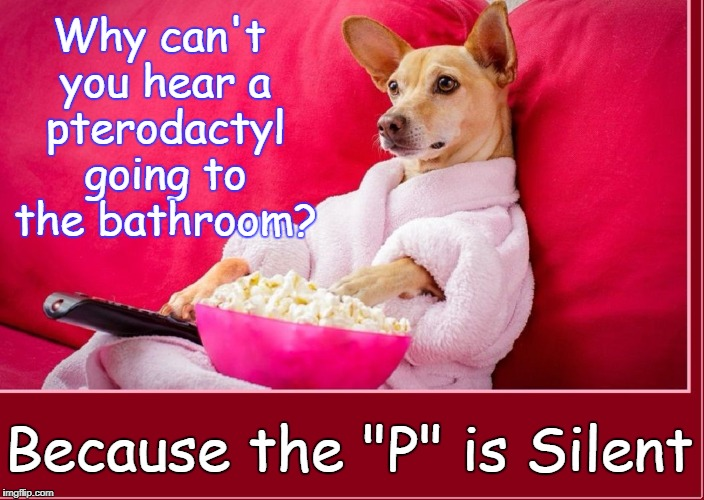 "Random Thoughts While Watching the Late Movies | Why can't you hear a pterodactyl going to the bathroom? Because the ""P"" is Silent 