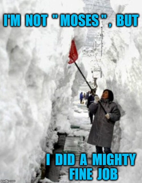 "snow storm | I'M  NOT  "" MOSES "" ,  BUT I  DID  A  MIGHTY  FINE  JOB 