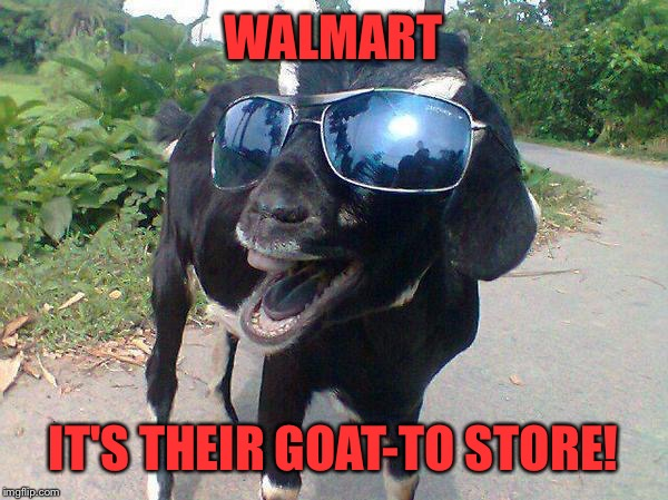 WALMART IT'S THEIR GOAT-TO STORE! | made w/ Imgflip meme maker