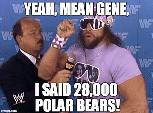 savage level | YEAH, MEAN GENE, I SAID 28,000 POLAR BEARS! | image tagged in savage level | made w/ Imgflip meme maker