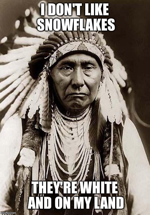 Indian Chief | I DON'T LIKE SNOWFLAKES THEY'RE WHITE AND ON MY LAND | image tagged in indian chief | made w/ Imgflip meme maker