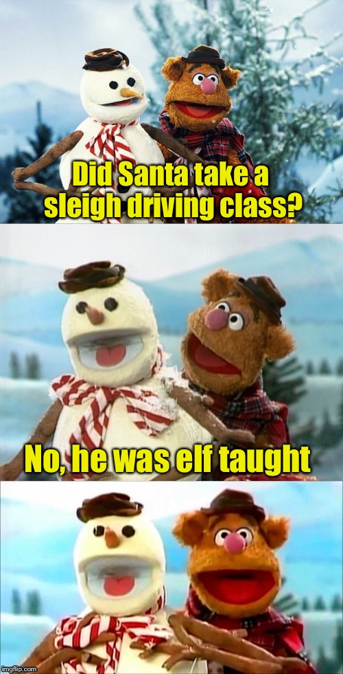 Christmas Puns With Fozzie Bear  | Did Santa take a sleigh driving class? No, he was elf taught | image tagged in christmas puns with fozzie bear | made w/ Imgflip meme maker