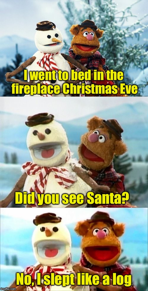Christmas Puns With Fozzie Bear  | I went to bed in the fireplace Christmas Eve Did you see Santa? No, I slept like a log | image tagged in christmas puns with fozzie bear | made w/ Imgflip meme maker