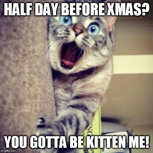 HALF DAY BEFORE XMAS? YOU GOTTA BE KITTEN ME! | image tagged in nala_cat omg | made w/ Imgflip meme maker