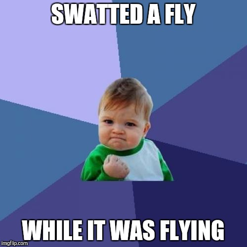 Success Kid Meme | SWATTED A FLY WHILE IT WAS FLYING | image tagged in memes,success kid | made w/ Imgflip meme maker