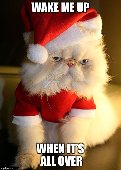 Santa Grumpy Cat | WAKE ME UP WHEN IT'S ALL OVER | image tagged in santa grumpy cat | made w/ Imgflip meme maker
