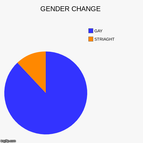 GENDER CHANGE | STRIAGHT, GAY | image tagged in funny,pie charts | made w/ Imgflip pie chart maker