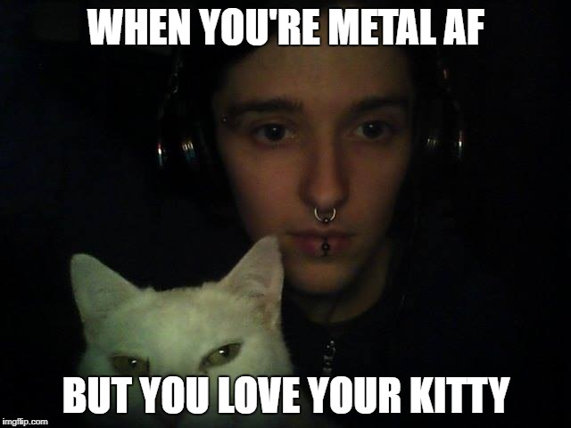 WHEN YOU'RE METAL AF BUT YOU LOVE YOUR KITTY | image tagged in kitty | made w/ Imgflip meme maker