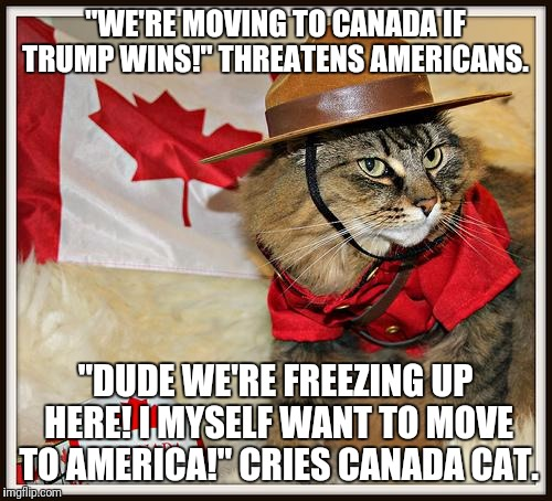 "Canada Cat | ""WE'RE MOVING TO CANADA IF TRUMP WINS!"" THREATENS AMERICANS. ""DUDE WE'RE FREEZING UP HERE! I MYSELF WANT TO MOVE TO AMERICA!"" CRIES CANADA C 