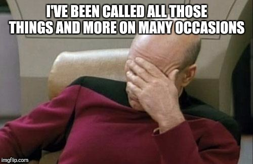 Captain Picard Facepalm Meme | I'VE BEEN CALLED ALL THOSE THINGS AND MORE ON MANY OCCASIONS | image tagged in memes,captain picard facepalm | made w/ Imgflip meme maker