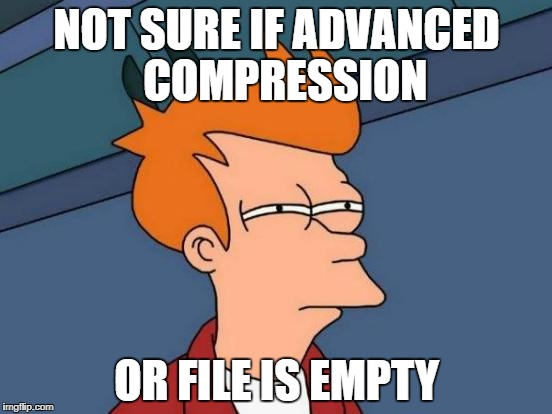 Futurama Fry Meme | NOT SURE IF ADVANCED COMPRESSION OR FILE IS EMPTY | image tagged in memes,futurama fry,compression,file,empty | made w/ Imgflip meme maker