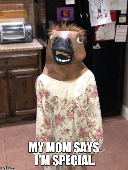 Mom says | MY MOM SAYS I'M SPECIAL. | image tagged in my,mom,says,special,horse,head | made w/ Imgflip meme maker