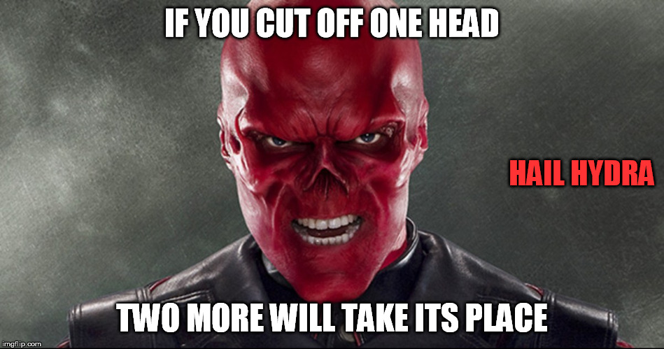 IF YOU CUT OFF ONE HEAD TWO MORE WILL TAKE ITS PLACE HAIL HYDRA | made w/ Imgflip meme maker