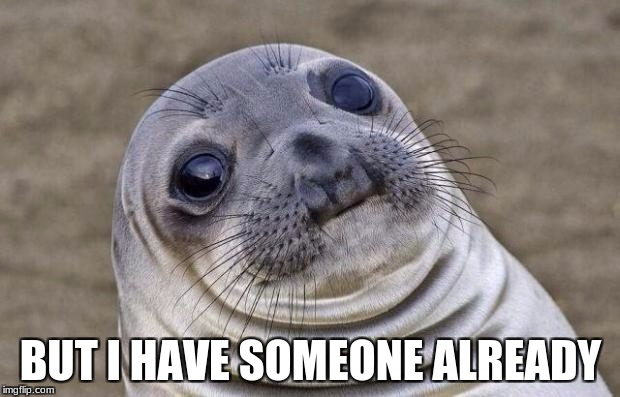 Awkward Moment Sealion Meme | BUT I HAVE SOMEONE ALREADY | image tagged in memes,awkward moment sealion | made w/ Imgflip meme maker