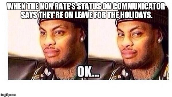 WHEN THE NON RATE'S STATUS ON COMMUNICATOR SAYS THEY'RE ON LEAVE FOR THE HOLIDAYS. | image tagged in ok | made w/ Imgflip meme maker