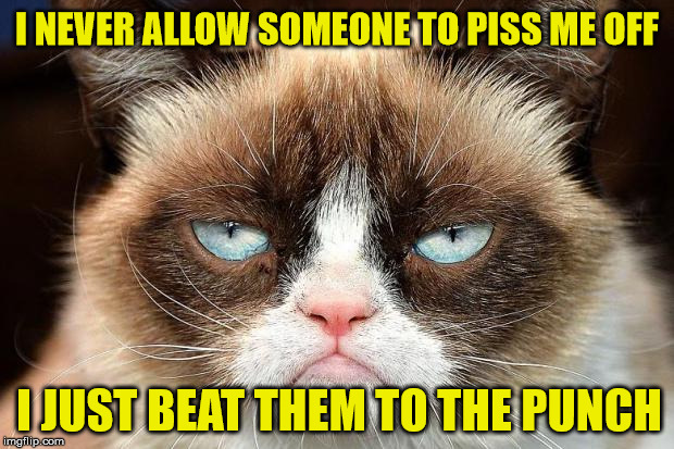 I Learned From Grumpy Cat | I NEVER ALLOW SOMEONE TO PISS ME OFF I JUST BEAT THEM TO THE PUNCH | image tagged in memes,grumpy cat not amused,grumpy cat | made w/ Imgflip meme maker