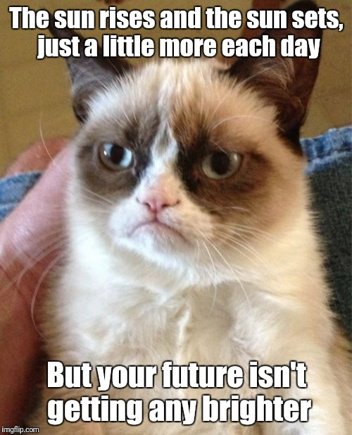 Grumpy Cat Meme | The sun rises and the sun sets, just a little more each day But your future isn't getting any brighter | image tagged in memes,grumpy cat | made w/ Imgflip meme maker
