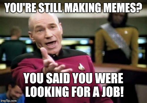 Picard Wtf Meme | YOU'RE STILL MAKING MEMES? YOU SAID YOU WERE LOOKING FOR A JOB! | image tagged in memes,picard wtf | made w/ Imgflip meme maker