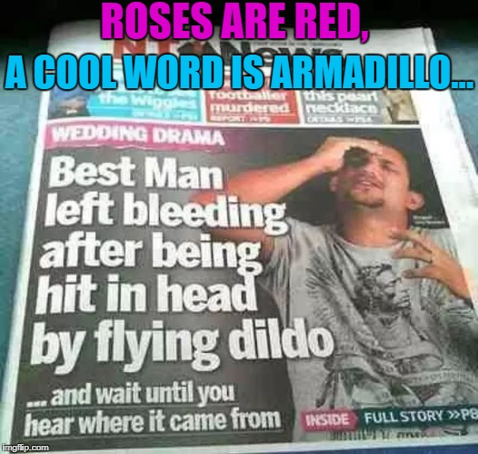 I Wrote This Poem for You... | ROSES ARE RED, A COOL WORD IS ARMADILLO... | image tagged in poem,memes,funny memes,dank memes,weird,newspaper | made w/ Imgflip meme maker