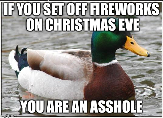 Actual Advice Mallard Meme | IF YOU SET OFF FIREWORKS ON CHRISTMAS EVE YOU ARE AN ASSHOLE | image tagged in memes,actual advice mallard,AdviceAnimals | made w/ Imgflip meme maker
