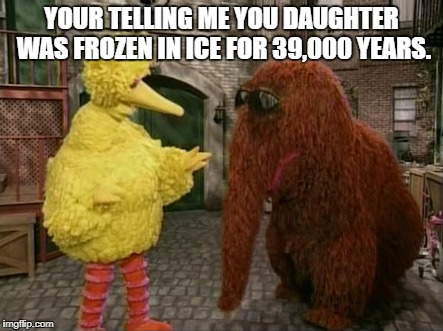Big Bird And Snuffy | YOUR TELLING ME YOU DAUGHTER WAS FROZEN IN ICE FOR 39,000 YEARS. | image tagged in memes,big bird and snuffy,funny,funny animals,sesame street | made w/ Imgflip meme maker